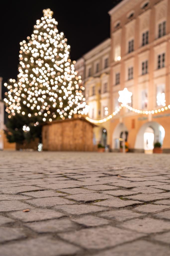Frohe Weihnachten in Rosenheim